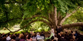 Morris Arboretum Wedding (1 of 1)-4